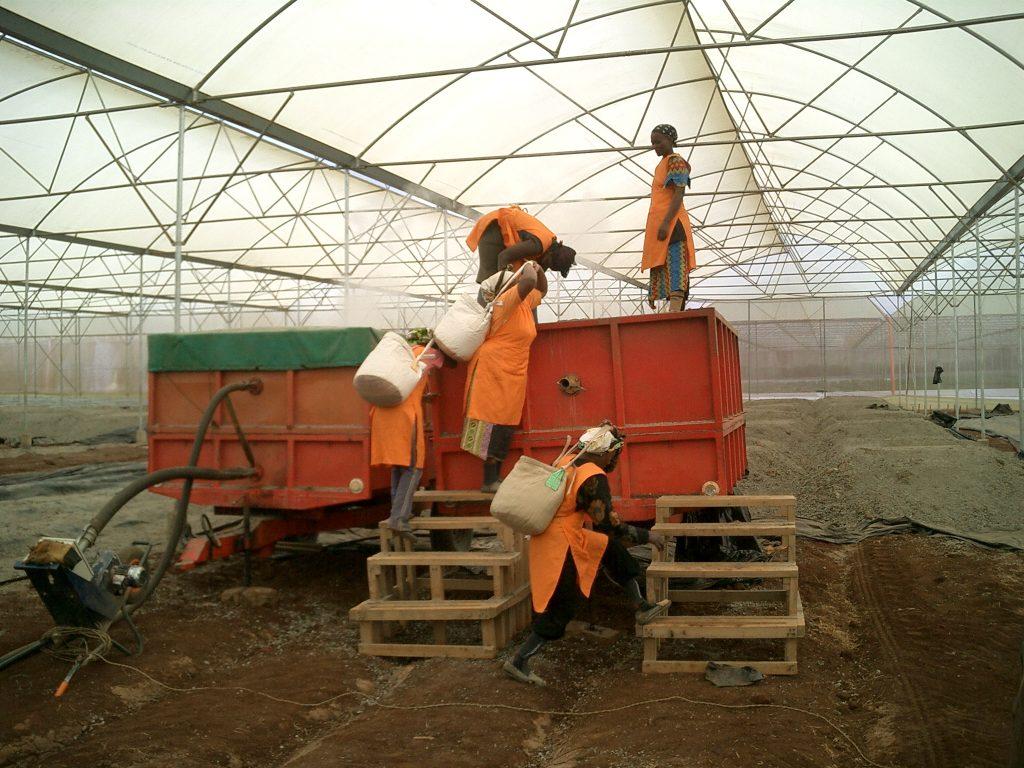 Die Spezial Dämpfcontainer von der Firma Barel BV, NL-Veldhoven, werden befüllt.