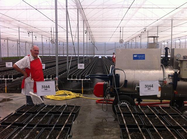 Dampfkessel der Firma MSD GmbH, D-Durbach, vor den Pflanzreihen. Links der Dämpfberater Marten Barel