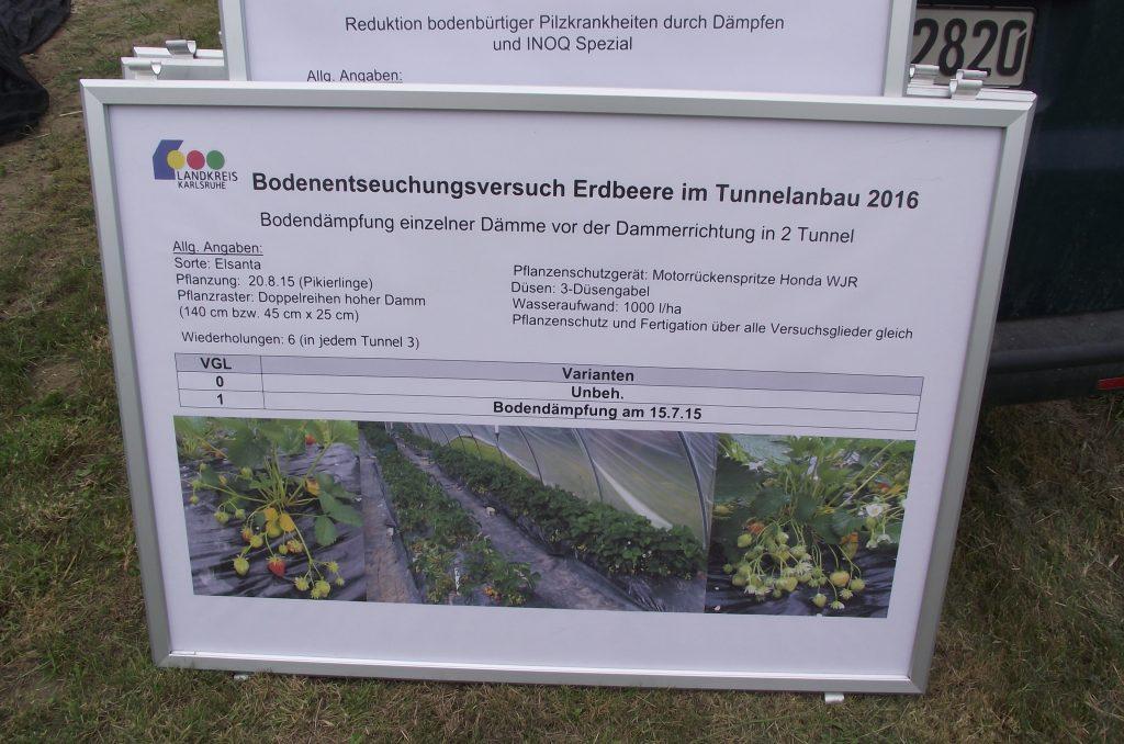 Schaubild zu den Ergebnisses der Dämpfung im Erdbeeranbau